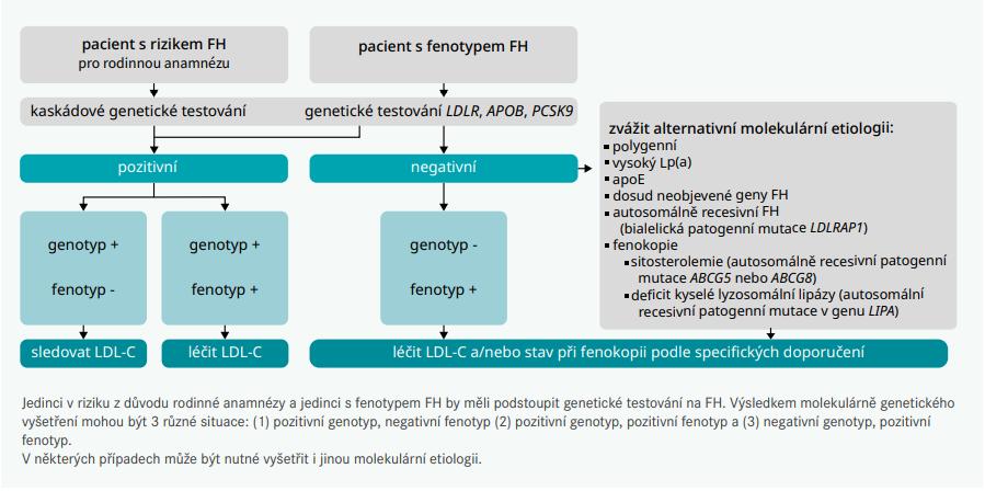 Schéma 2 | Genetické testování by měly podstoupit různé skupiny pacientů