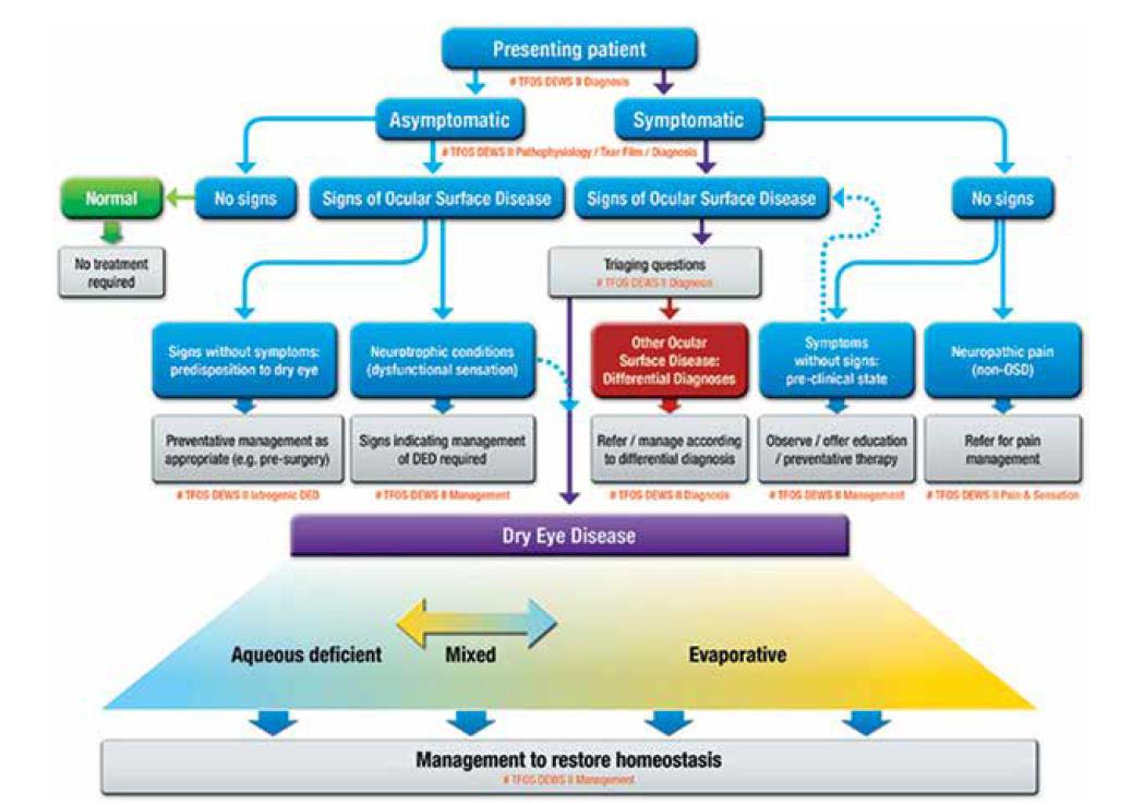DEWS II Report z roku 2017 – revidované klasifikační schéma [2]