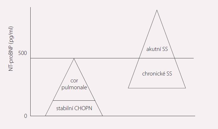 Hodnoty natriuretických peptidů u pacientů s CHOPN a SS. Upraveno dle [10].
