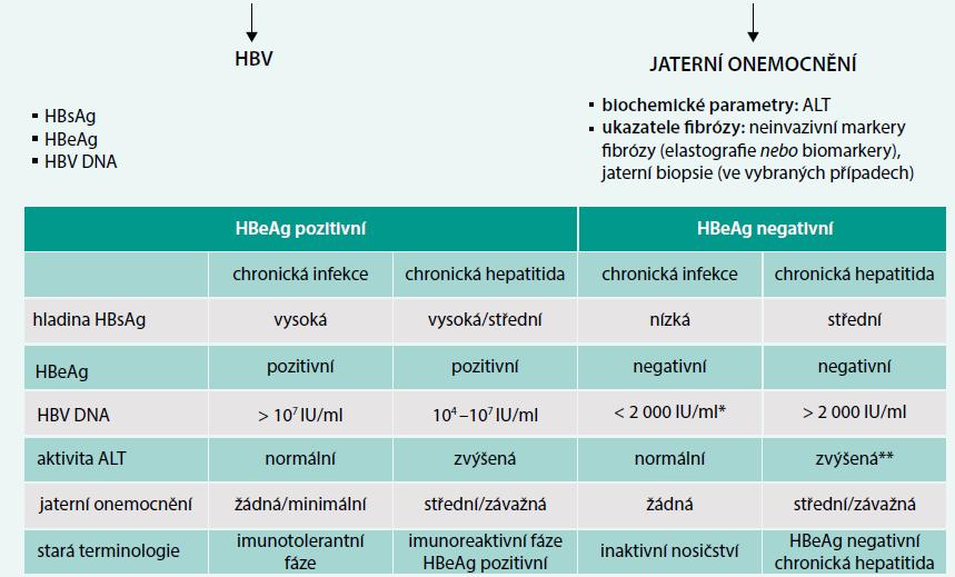 Schéma. Přirozený vývoj a diagnostika chronické infekce HBV. Upraveno podle [1]