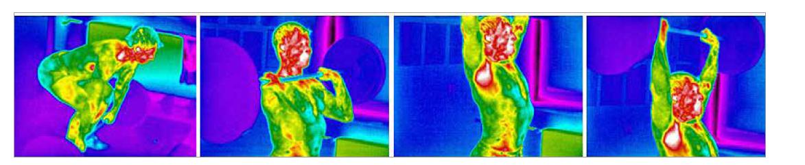 Schéma 1. Termogram teplotných zmien u vzpierača počas tréningu.<br> Scheme 1. Thermogram of temperature changes at the weightlifter during training.