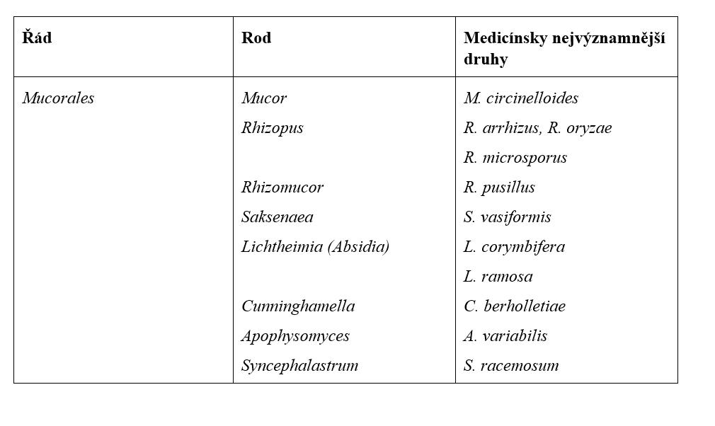 Přehled klinicky nejvýznamnějších druhů řádu Mucorales (volně upraveno podle  Binder et al.).