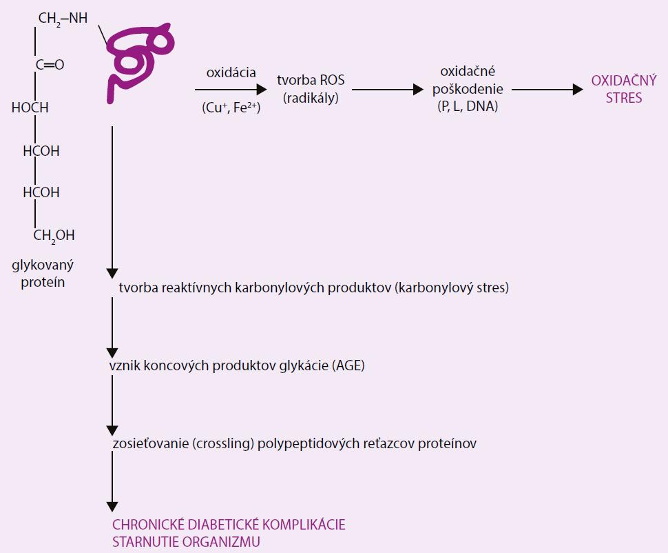 Účinok AGEs v patogenéze chronických diabetických komplikácií