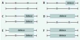 Schéma 4. Genotypové varianty delečních forem α-talasemií