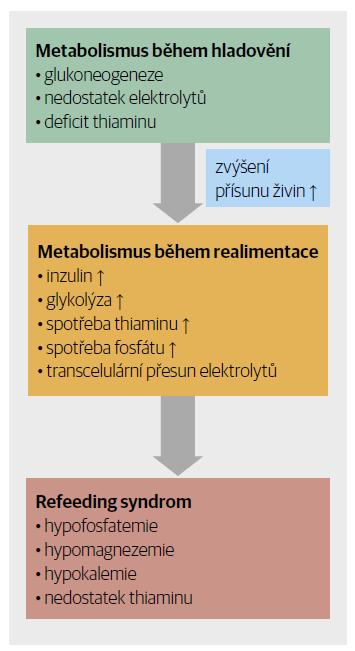Patofyziologie refeeding syndromu.