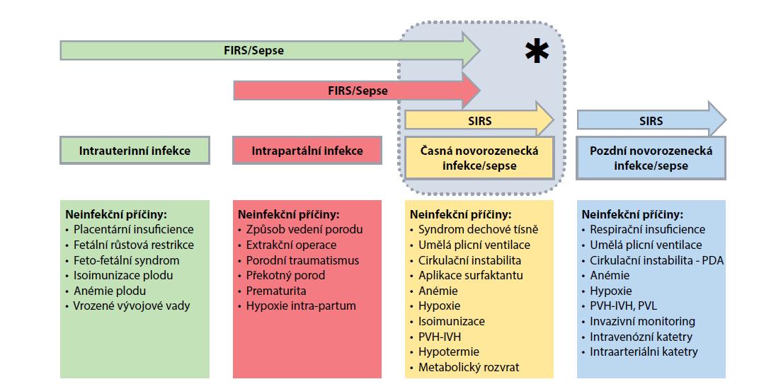 Schéma 1. Schematické znázornění období vzniku infekce/sepse a neinfekčních příčin systémové zánětlivé odpovědi plodu a/nebo novorozence.<br> Hvězdička (*) vyjadřuje období diagnostiky časné novorozenecké sepse a potencionálně multifaktoriální charakter diagnostikovaných změn.