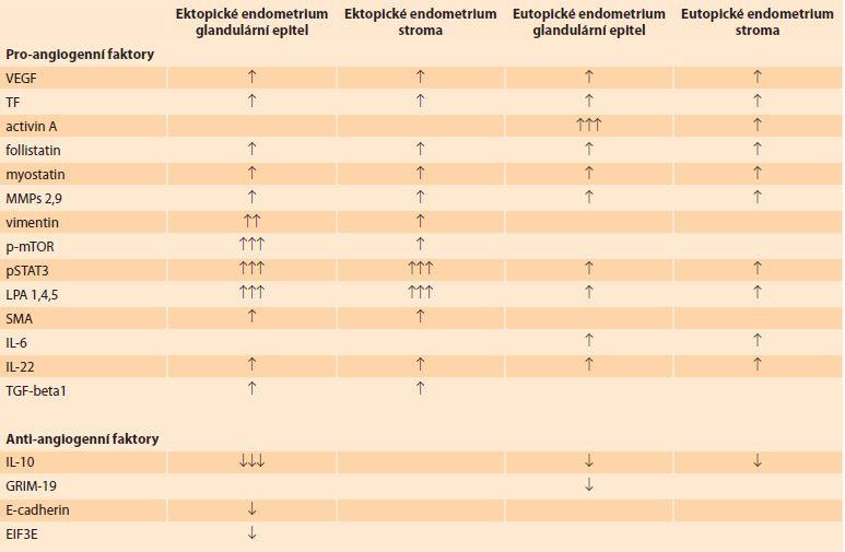 Přehled pro-angiogenních a anti-angiogenních faktorů v glandulárním epitelu a stromatu ektopického a eutopického endometria. </br> Overview of pro-angiogenic and anti-angiogenic factors in the glandular epithelium and stroma of ectopic and eutopic endometrium.