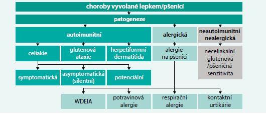Schéma. Choroby vyvolané lepkem/pšenicí. Upraveno podle [53]