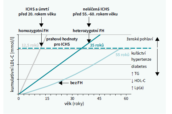Rozvoj aterosklerózy v závislosti na typu familiární hypercholesterolemie a rizikových faktorech. Upraveno podle [6]