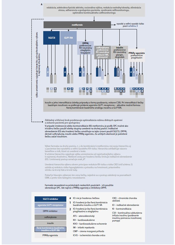 Schéma 2. Odporúčaný teraupetický postup u pacientov s DM2T