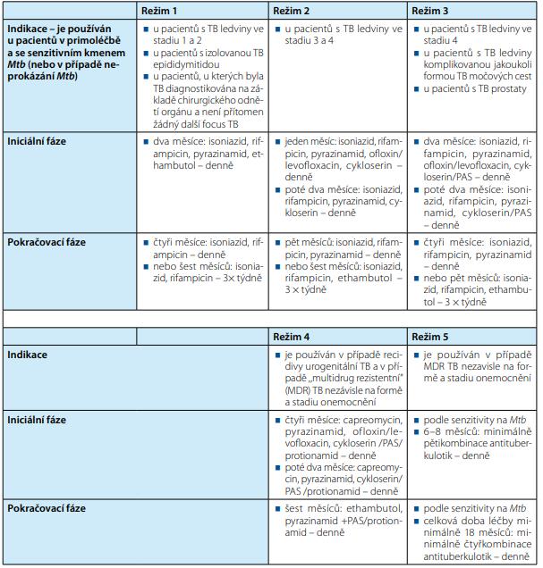 Antituberkulotická terapie<br> Tab. 2. Treatment with antituberculotics