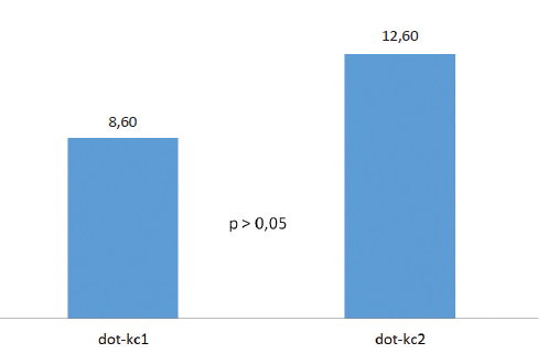 Výsledky dotazníku (CVS-Q) u obou typů kontaktních čoček (body)
