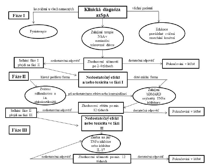 Doporučení pro léčbu axiální spondyloartritidy dle Evropské ligy proti revmatismu (EULAR) a Mezinárodní společnosti pro hodnocení spondyloartritid (ASAS) z roku 2016<br> axSpA – axiální spondyloartritida, NSA – nesteroidní antiflogistika, bDMARD – biologický chorobu modifikující lék, TNF-α – tumor nekrotizující faktor alfa, IL-17 – interleukin 17, i.a. – intraartikulární