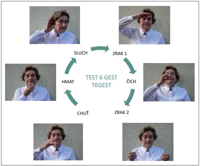 Šest gest symbolizující lidské smysly k testování krátkodobé paměti testem TEGEST jsou v pořadí, jako by byly uspořádány do kruhu od úst (1. chuť – napijete se ze sklenice) přes tvář (2. hmat – dotýkáte se brady), ucho (3. sluch – špatně slyšíte), oči (4. zrak – někoho vyhlížíte) k nosu (5. čich – nadechnete příjemnou vůni). Nakonec se přidává jedno gesto týkající se znovu zraku (6. čtete noviny).<br> Fig. 1. Six gestures symbolizing the human senses to examine short-term memory with the TEGEST test are in the order as if they were arranged in a circle from the mouth (1. taste – you are drinking from the glass) followed by the face (2. touch – you touching your chin), the ear (3. hearing – you cannot hear), the eyes (4. sight – you are looking for someone), and up to the nose (5. smell – you breathing in a pleasant smell). Finally, one gesture related to sight is added (6. you are reading newspaper).