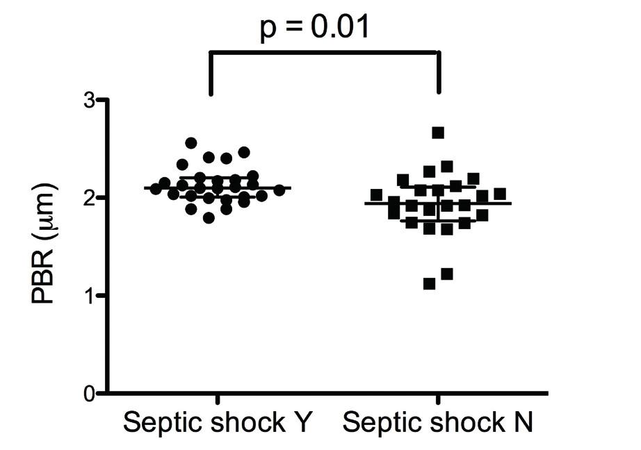 Obr. 4 Individuální hodnoty PBR během pobytu na JIP u pacientů s se septickým šokem a bez septického šoku. Septic shock Y – přítomnost septického šoku, Septic shock N – bez septického šoku. Sudden onset – náhlý vznik kritického stavu, non-sudden onset – bez náhlého vzniku kritického stavu