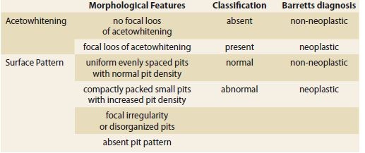 A new classification using acetic acid chromoendoscopy. Tab. 1. Nová klasifi kace pomocí chromoendoskopie kyselinou octovou.