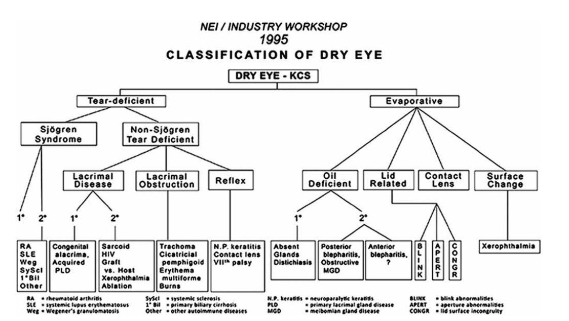 Klasifikace NEI / Indrustry workshop 1995 [3]