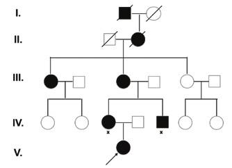 Rodokmeň rodiny s Marshall/Sticklerovým syndrómom.