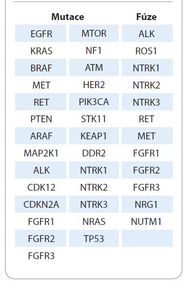 Seznam navrhovaných markerů pro komplexní molekulární testování u nemalobuněčného karcinomu plic.