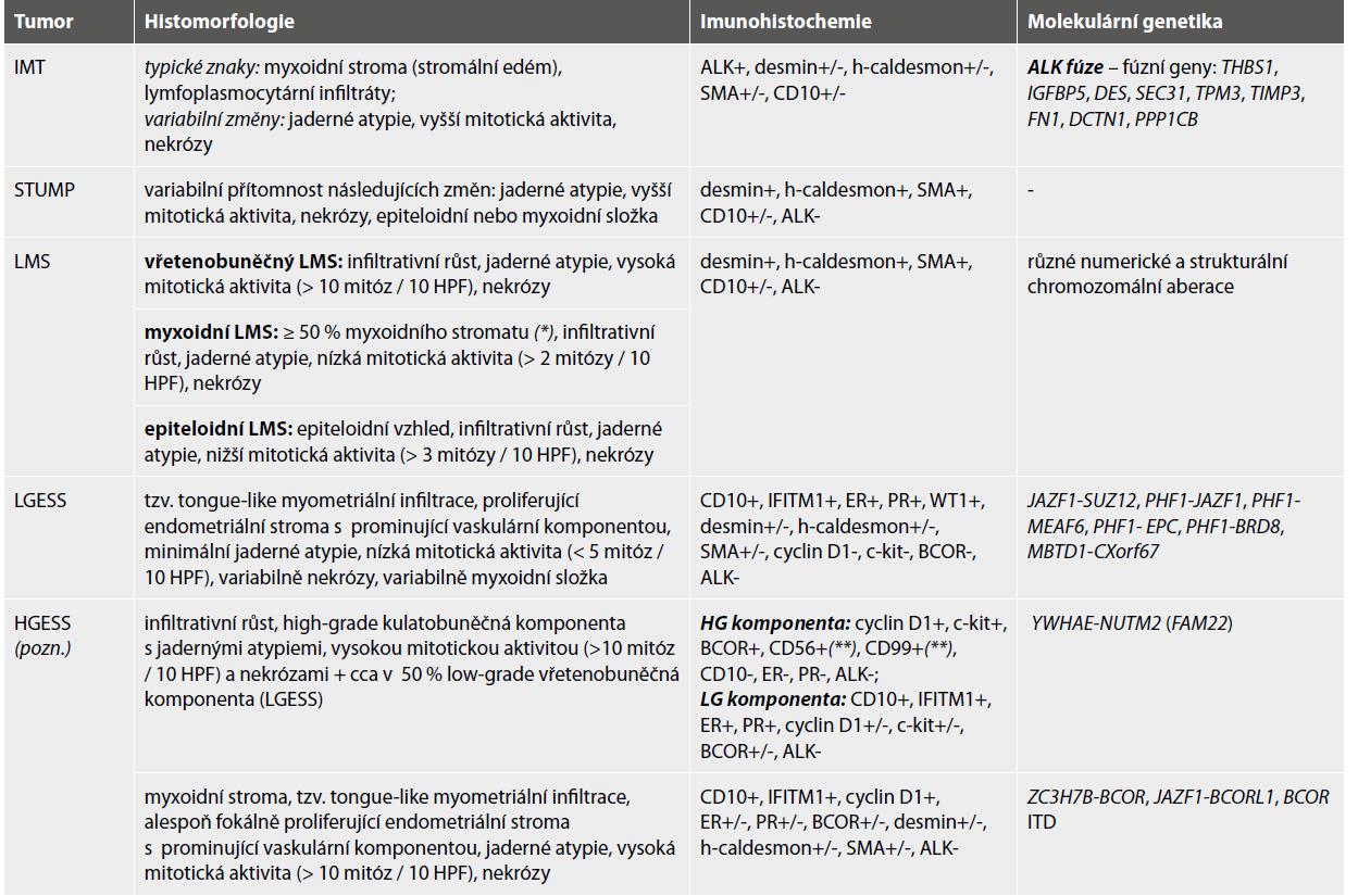 Diferenciální diagnostika IMT dělohy.