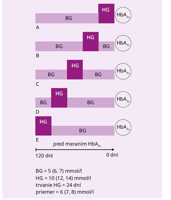 Modely 24-dňových hyperglykemických epizód, ktoré sa odohrali v rôznom časovom období pred meraním HbA1c