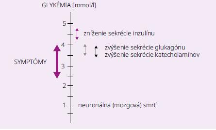 Schéma | Fyziologické obranné mechanizmy proti hypoglykémii. Upravené podľa [2]