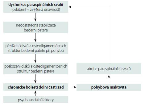 Schéma mechanizmů rozvoje chronických nespecifických bolestí dolní části zad.<obr> Fig. 1. Diagram of mechanisms of development of chronic non-specific low back pain.