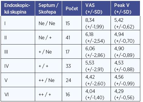 Výsledné VAS udané pacienty a výsledný průměrný peak voltáže změřené flowmetrem v jednotlivých endoskopických skupinách. Ve sloupci septum +=malá deviace nosní přepážky, septum ++=výrazná deviace nosní přepážky, skořepa +=zjevná hypertrofie skořepy.