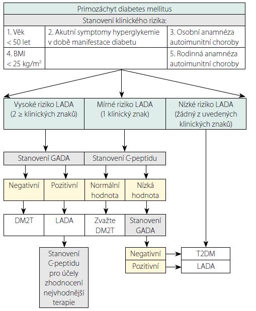 Navrhovaný algoritmus diagnostiky LADA