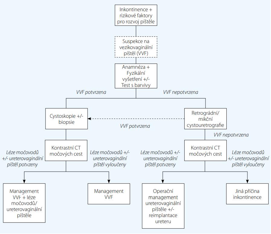Schéma 1. Vyšetřovací algoritmus při suspekci na urogenitální píštěl (zjednodušeně)<br> Flowchart 1. Simplified algorithm of the diagnostic work-up for urogenital fistulae