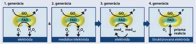 Glukózové senzory na báze glukózo-oxidázy [12]