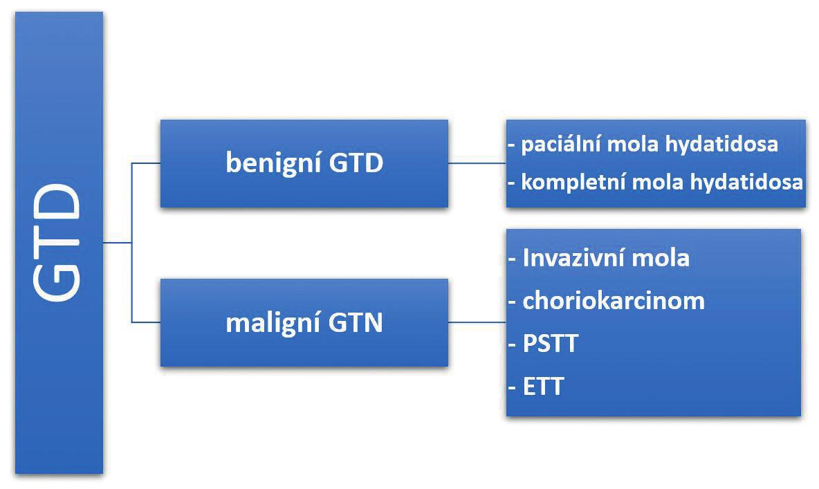 schéma1 Rozdělení gestační trofoblastické nemoci<br> GTD – gestační trofoblastická nemoc, GTN – gestační trofoblastická neoplazie, PSTT – trofoblastický tumor placentárního lůžka, ETT – epiteloidní trofoblastický tumor