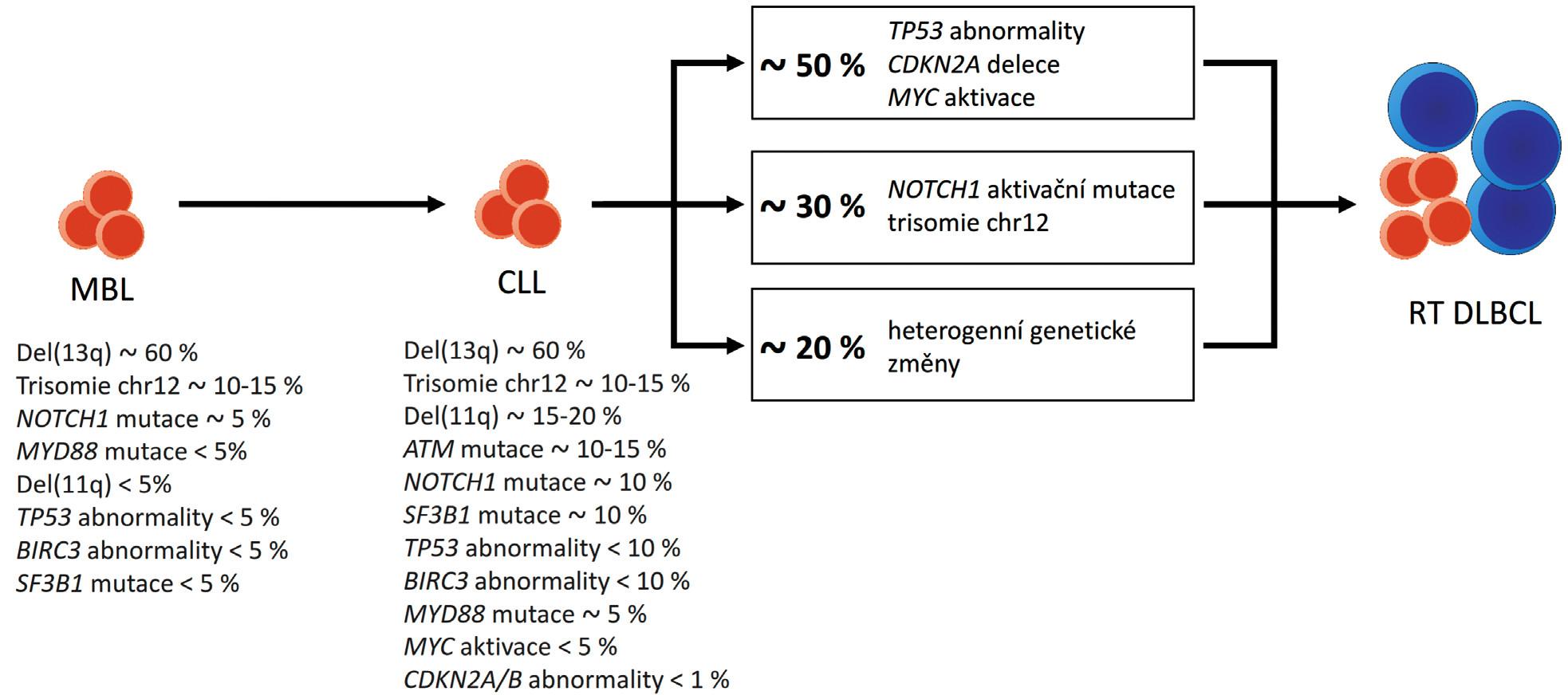 Genetické změny uRichterovy transformace chronické lymfocytární leukemie (CLL) do difuzního velkobuněčného lymfomu (RT DLBCL). Upraveno podle [10, 48, 49].