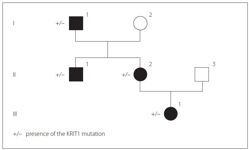 Presence of KRIT1 mutation in the genealogical tree of the family.<br> Obr. 1. Přítomnost mutace KRIT1 v genealogickém stromu rodiny.