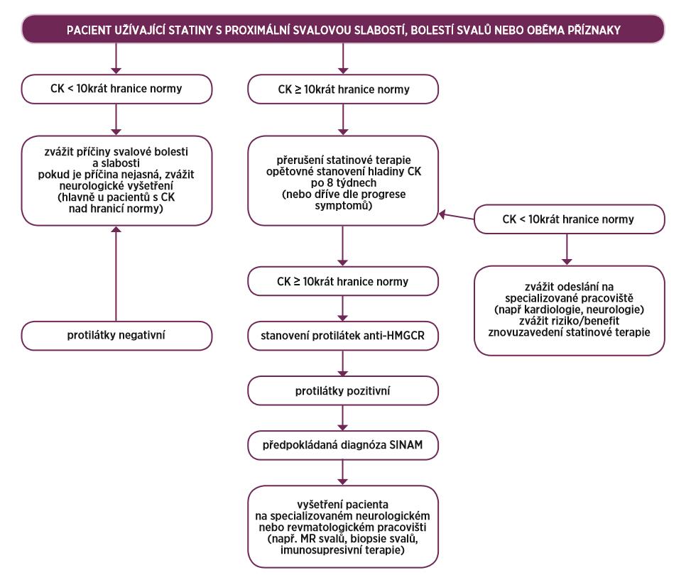Schéma vhodného diagnostického algoritmu u pacienta spodezřením na SINAM (převzato a upraveno dle Mammena et al.) (9)