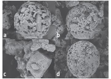 Spray-dried CPE<br> a) Cellactose® 80, b) MicroceLac® 100, c) RetaLac®,<br> d) StarLac®