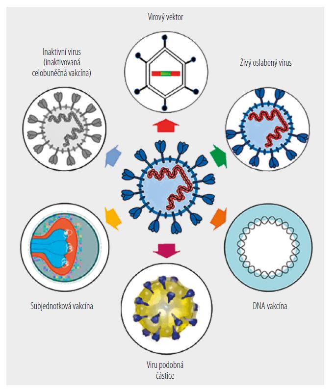 Schéma základních přístupů výroby vakcín proti SARS-CoV-2. [Upraveno podle 8]