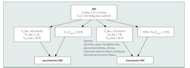 Schéma odlišení tranzientního a perzistentního AKI na základě biochemického vyšetření moči