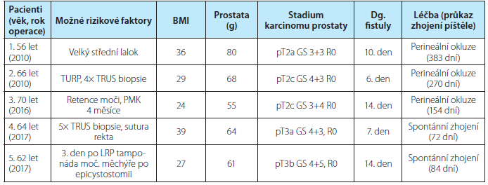 Charakteristiky pacientů, možné rizikové faktory vzniku píštěle, doba do zhojení<br>