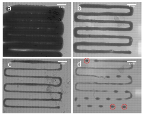 Analysis of printability. Patterns were printed with 100 kPa (a), 75 kPa (b), 60 kPa (c) and 50 kPa (d). Red circles indicating spots within the scaffold which were observed in terms of cell viability.