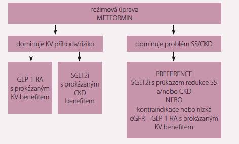 Pozice a indikace nových antidiabetik v léčbě DM2. DM2 – diabetes mellitus 2. typu; KV – kardiovaskulární; SS – srdeční selhání; CKD – chronické onemocnění ledvin; GLP-1 RA – agonista receptoru pro GLP-1; SGLT2i – inhibitory SGLT2