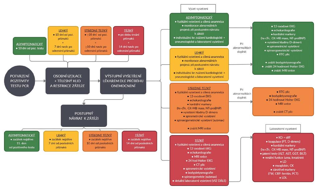 Psychologická podpora a režimová opatření sportovců při pandemii covidu-19