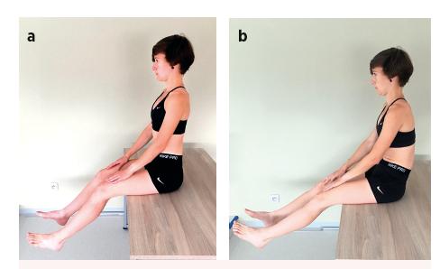 Sitting knee extension test