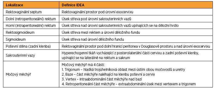 Anatomické definice podle doporučení IDEA