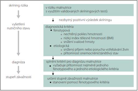 Globální konsensus pro diagnostiku malnutrice u dospělých. Fig. 2. Global consensus for the diagnosis of malnutrition in adults.