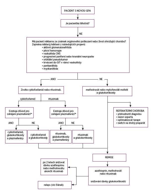 Doporučení pro léčbu granulomatózy s polyangiitidou<br> * tři hlavní indikace pro zahájení plazmaferéz:<br> 1. rychle progredující glomerulonefritida vedoucí k akutnímu renálnímu selhání (s nutností dialýzy, vzestup kreatininu > 350 μmol/l)<br> 2. pozitivita protilátek proti bazální membráně glomerulů<br> 3. plicní hemoragie s respirační insuficiencí nebo v případě, kdy nereaguje na podávané vysoké dávky glukokortikoidů