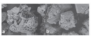 Wet granulated CPE<br> a) Ludiflash®, b) Xylitab® 100
