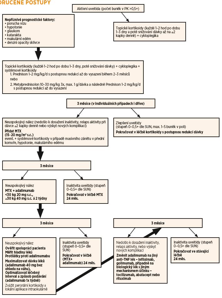 Schéma 1. Léčebný algoritmus doporučený pro léčbu uveitidy asociované s JIA v ČR a SR. Adaptováno podle Heiligenhaus Seminars in Arthritis and Rheumatism (2019) [152], Clarke Pediatric Rheumatol (2016) [7] a Bou Rheumatol Int (2015) [5]. Cílem na všech úrovních je minimalizovat dávku topických kortikoidů na ≤2 kapky denně za dosažení počtu buněk v přední komoře ≤0,5+ (max. 1–5 buněk v poli). Legenda: hod – hodiny, PK – přední komora, měs – měsíc, MTX – methotrexát, SUN –Standardizovaná nomenklatura uveitidy, tý – týden