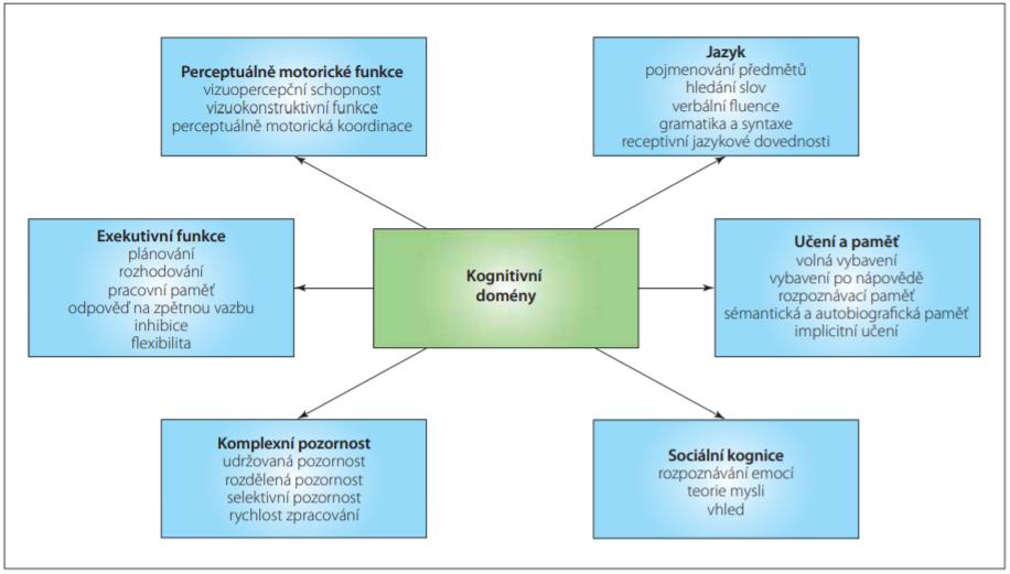 Kognitivní domény. Převzato, přeloženo a graficky modifikováno z [8].<br> Fig. 1. Cognitive domains. Originally from [8]; translated and graphically modified.
