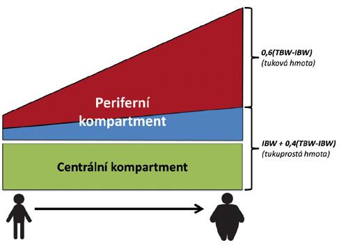 Schematické znázornění tělesného složení u pacientů podle BMI.  Na schématu je patrné, že relativní množství tuku v těle stoupá rychleji, než  množství tukuprosté váhy